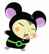 Hi-hamtaro-little-h-4e262a4c9e303