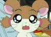 Hamtaro-screenshots-hamtaro-28282555-475-348