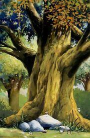 Boss' Tree.jpg