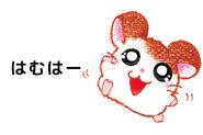 Hamtaro-2-gbc-artwork-hamha