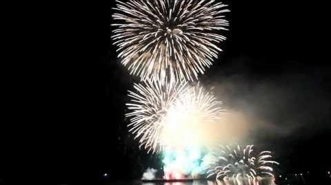 第52回_市民祭_あしずりまつり_花火大会(フィナーレ)2013