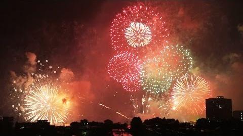 2014年 びわ湖大花火大会