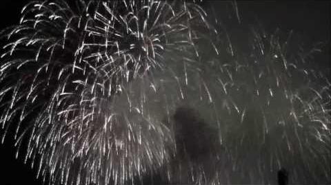 049 2013フィナーレ☆富士山すその大花火大会 裾野夏まつり 世界文化遺産の富士山周辺シリーズ