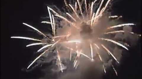 宮崎県西米良村 第41回夏祭り「やまびこ花火大会」映像その6
