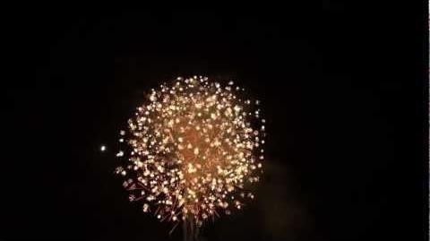 2012 大曲の花火 【内閣総理大臣賞】日本の花~侘寂~ 山内煙火店