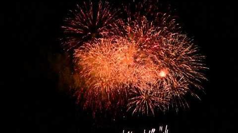2011 さいたま市花火大会 東浦和、大間木公園会場フィナーレ