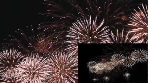 おやまサマーフェスティバル2012~第61回小山の花火~
