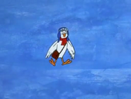 Yankee Doodle Pigeon (6)