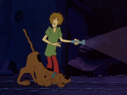 Scaried Shaggy and Scooby