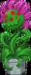 Carnivorus Plant