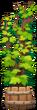 Tree in a Wood Pot