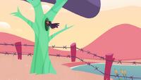Crowtree