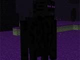 Ender Guardian