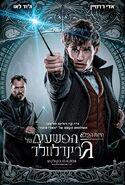 Newt & Dumbledore Fantastic Beasts