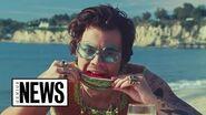 "Harry Styles' ""Watermelon Sugar"" Explained Genius News"