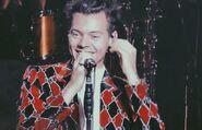 Harry tour 49