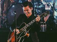 Harry tour 31