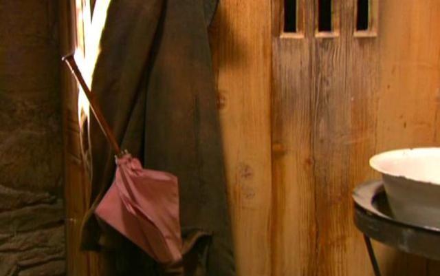 Hagrids rosa Regenschirm