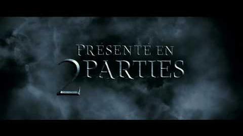 Harry_Potter_et_les_Reliques_de_la_Mort_(VF)