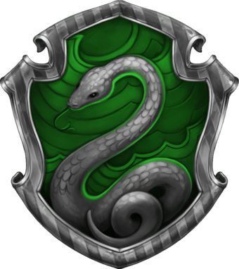 Slytherin   La Boutique Stranger Things