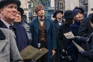FBaWtFT Newt Scamander in NY