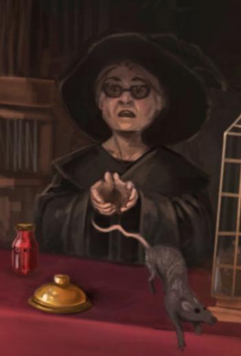 Продавщица магазина «Волшебный зверинец»