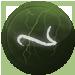 Siipiirdium lentiusa