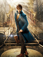FBaWtFT promo Newt Scamander