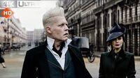 Fantastic Beasts Crimes of Grindelwald Grindelwald in Paris Kills Muggles 4k