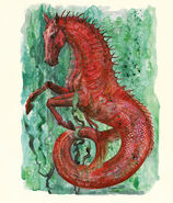 Hippokampus - ilustracje Olivii Lomenech Gill