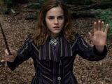 Muggle-Repelling Charm