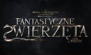 FZiJJZ Logo PL.jpg