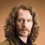 Sirius-black-harry-potter-and-the-prisoner-of-azkaban-movie-mobile-wallpaper-1080x1920-9281-3248831100.jpg