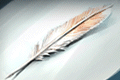 Self-Spelling Quill