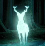 Harry PottersPatronus.jpg
