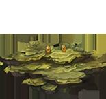Korniczak