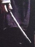 Delphini's wand