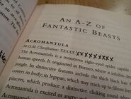 Fantastyczne Zwierzęta - notatki Harry'ego i Rona