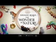 Fantastic_Beasts™-_The_Wonder_of_Nature_-_Natural_History_Museum