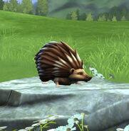 Knarl at the Magical Creatures Reserve