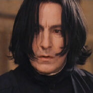 Snape300