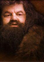 9 Hagrid.jpg