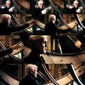 Draco verzweifelt HP6