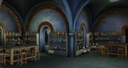 Klasa Eliksirów (Harry Potter Hogwarts Mystery)