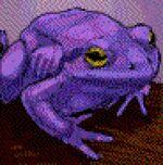 Giant Purple ToadPoA.jpg