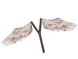 Winged catapult