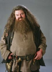Hagrid05 HP1.jpg