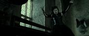 Bellatrix Lestrange frozen DHF2.png