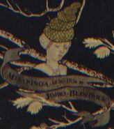Misapinoa