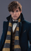 Newton Scamander Profile crop